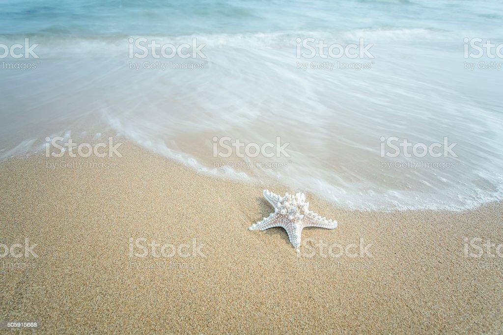 北戴河海の ストックフォト