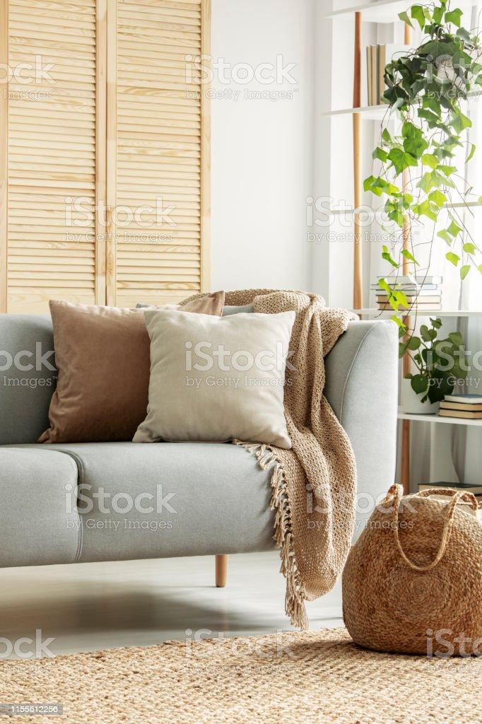 Beige Kissen Auf Grauem Sofa Im Neutralen Wohnzimmer ...