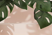 istock 3D beige pedestal display with monstera palm leaves. Bright Step podium, jungle summer exotic background.  Banner with natural leaf shadow. Nude Abstract trendy tropical 3D render illustration mockup 1250439701