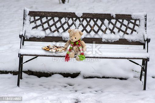 istock Beige plushy teddy bear with red green striped knitted scarf sitting with Christmas cookies on the bench covered with white snow 1184914852