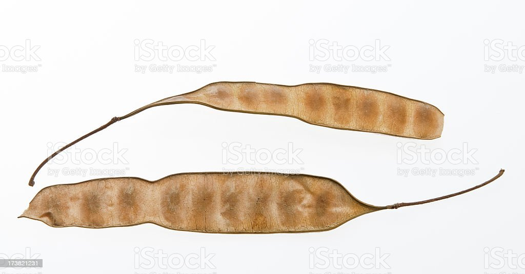 Beige pods royalty-free stock photo