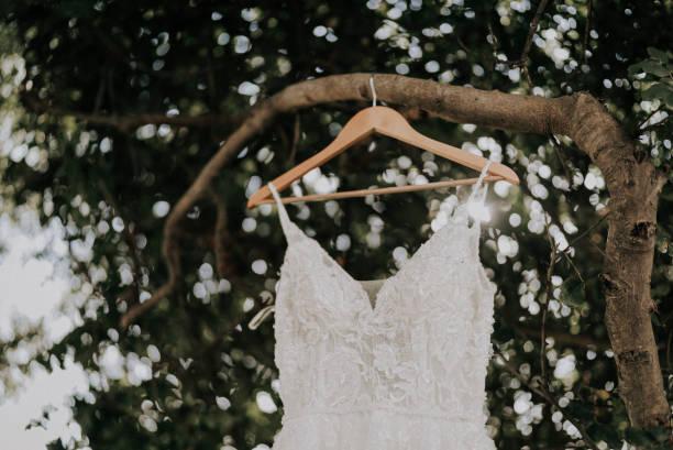Beige Hochzeit Kleid hängen Ast im Garten – Foto