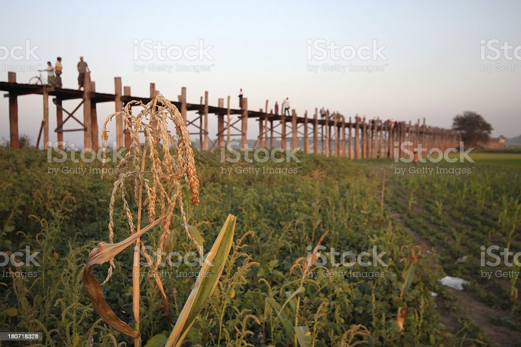 U Bein Bridge, Myanmar royalty-free stock photo