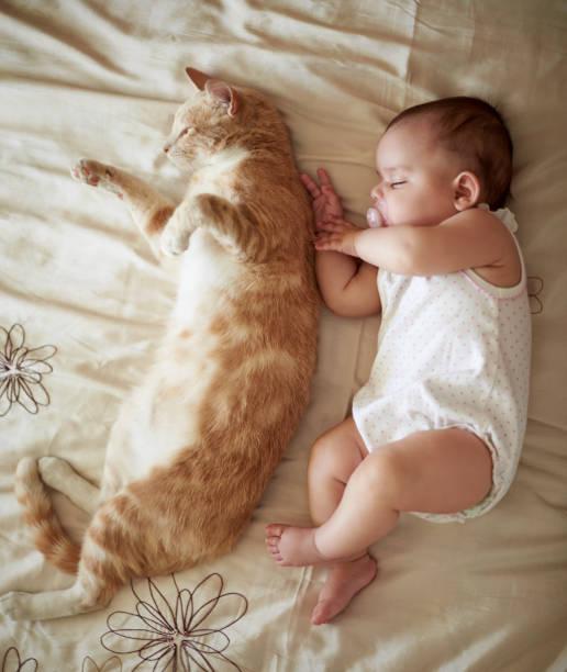 Being cute is exhausting work picture id997665018?b=1&k=6&m=997665018&s=612x612&w=0&h=w6ksejei mbo30rbpxcrztfplbqrbzjgrgnsgcdswtw=
