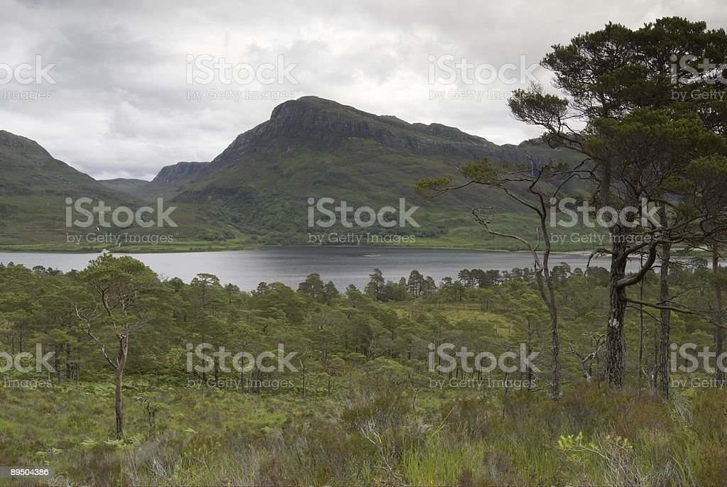 Beinn Eighe National Nature Reserve royalty-free stock photo