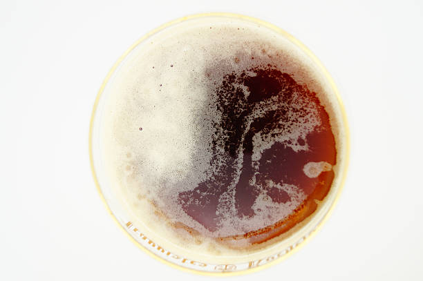 belgian brown beer in gold rim glass from above - dark beer stock photos and pictures