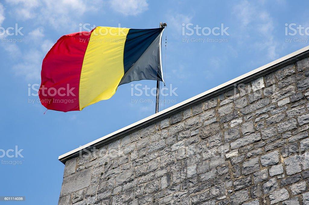 Belgian flag in top of citadel Dinant - foto de acervo