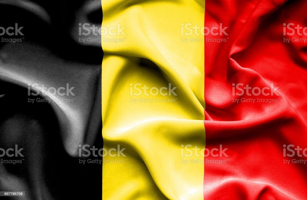 Agitant le drapeau de la Belgique - Photo
