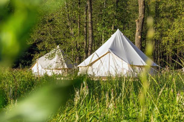 Bell tents outdoors at forest landscape stock photo