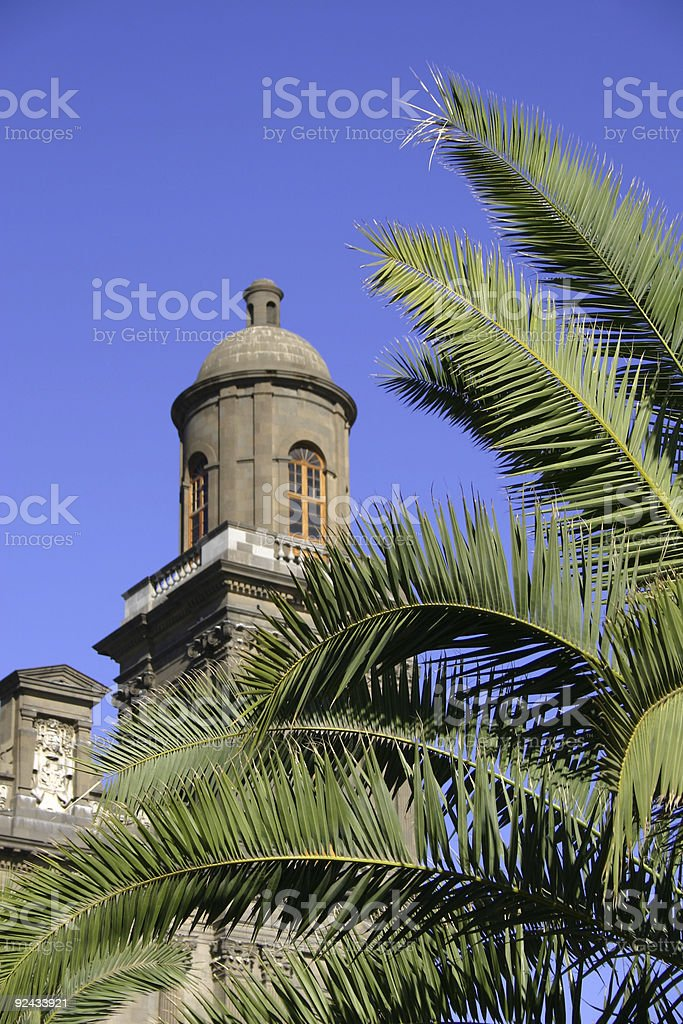 Bell Tower Behind Palms royalty-free stock photo