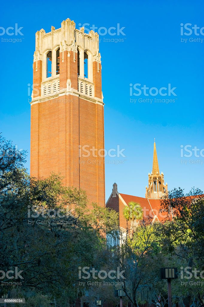 Bell Tower - University of Florida royalty-free stock photo