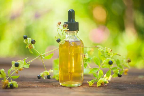 huile essentielle de belladone dans belle bouteille sur table - amaryllis photos et images de collection