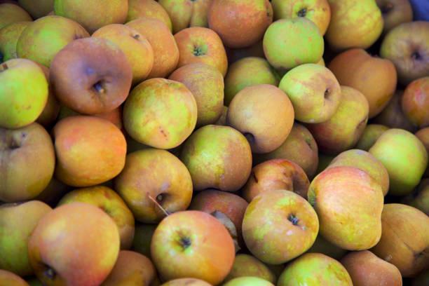 Belle de Boskoop apples background