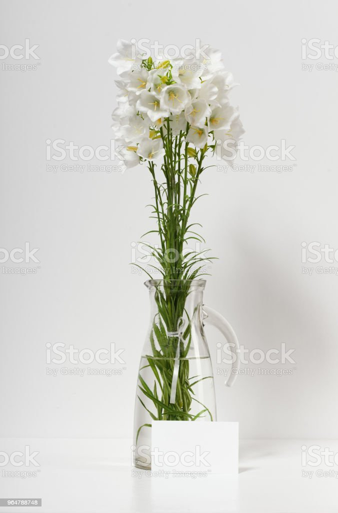 bellflower in a vase on a table by the wall and blank sheet for text, white background royalty-free stock photo