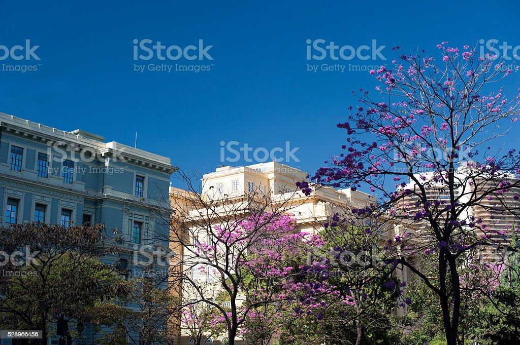 Belo Horizonte, Brazil stock photo