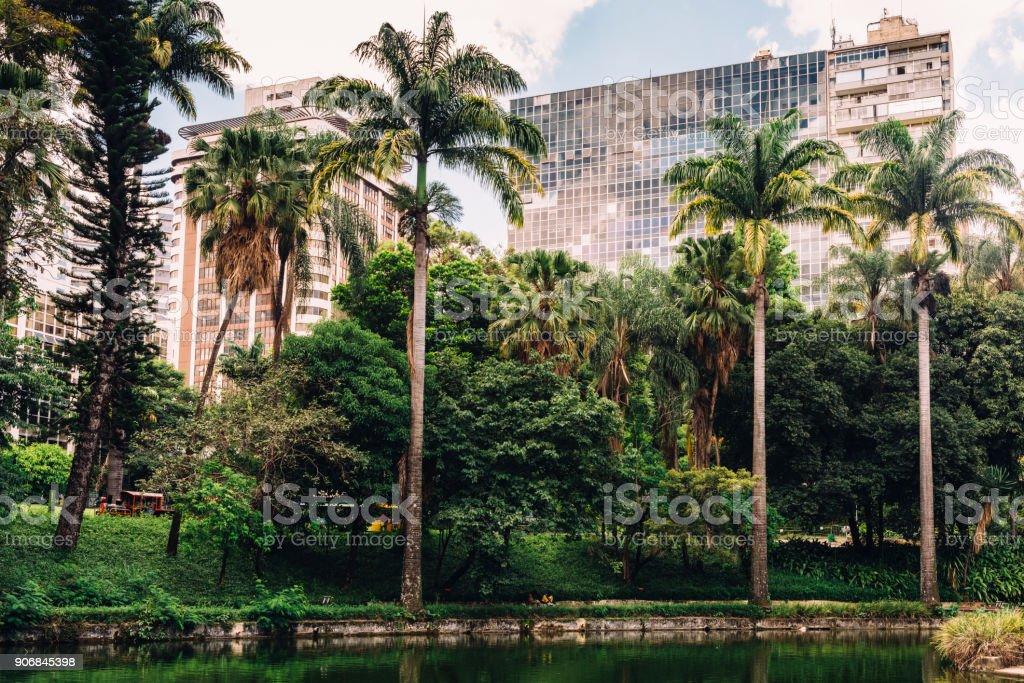 Belo Horizonte Municipal Park stock photo
