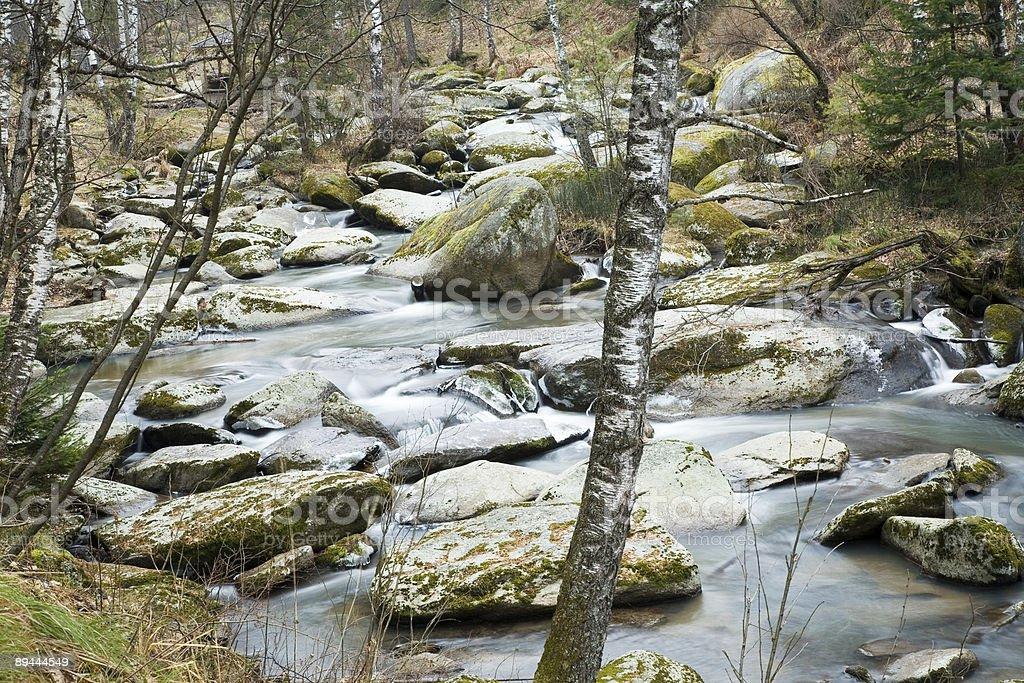 Belokurikha rivière. photo libre de droits