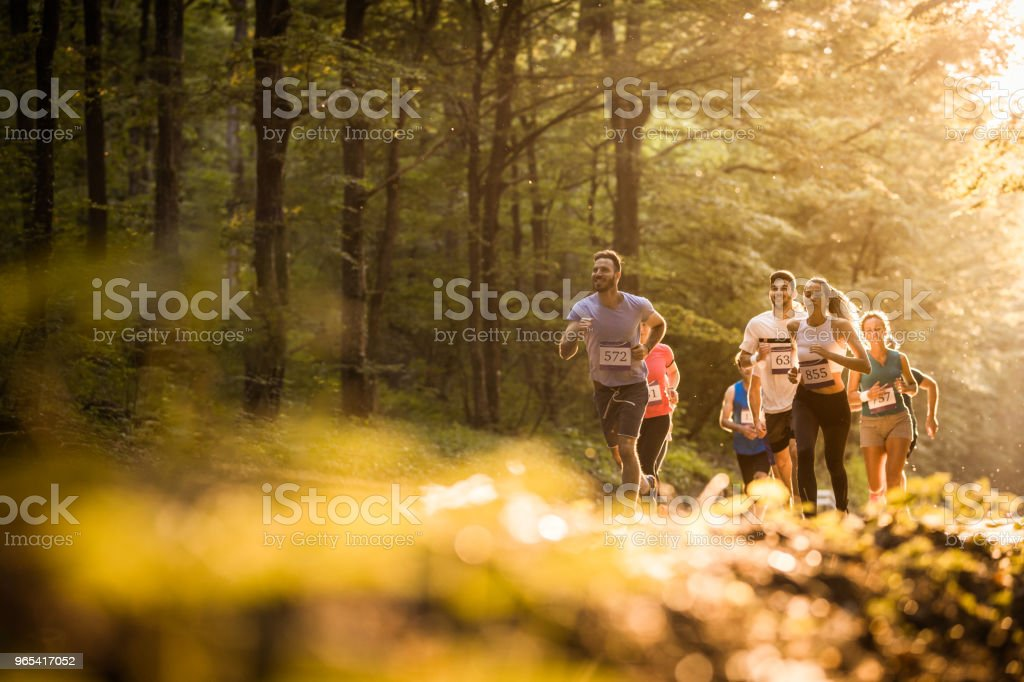 Below view of athletic people running a marathon through nature. royalty-free stock photo