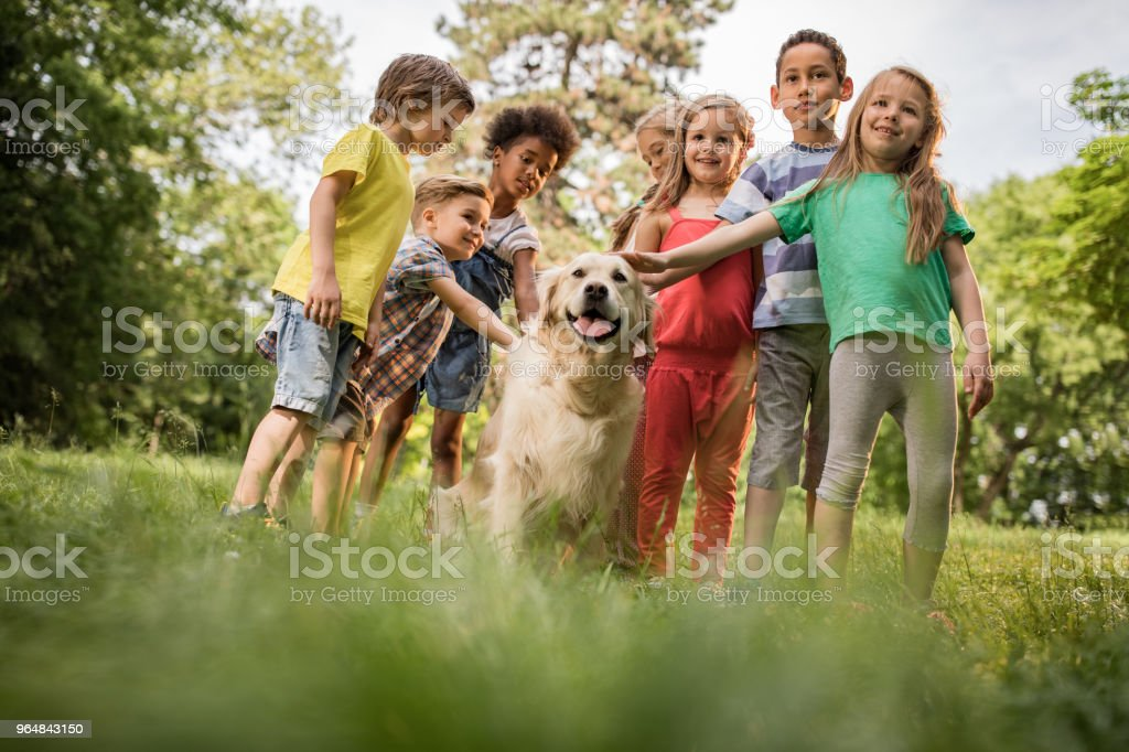 Below view of happy children with golden retriever in springtime. royalty-free stock photo