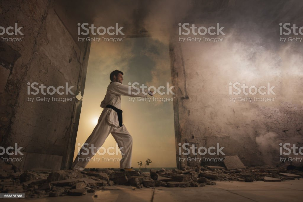 Below view of male martial artist practicing karate. stock photo
