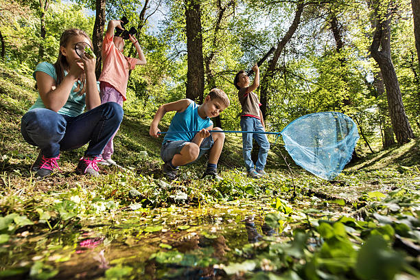 Below view of small explorers in the park. Low angle view of group of little explorers discovering the nature. field trip stock pictures, royalty-free photos & images