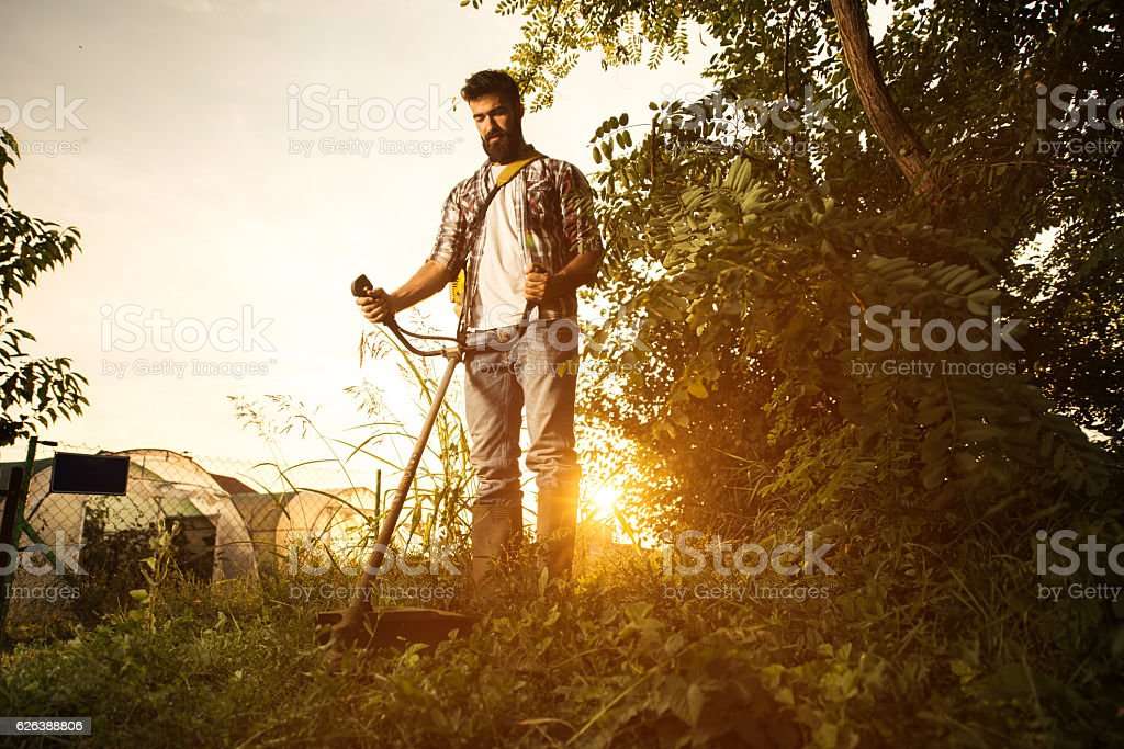 Below view of young farmer mowing the lawn at sunset. stock photo