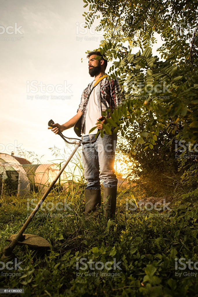 Below view of young man mowing the lawn at sunset. stock photo