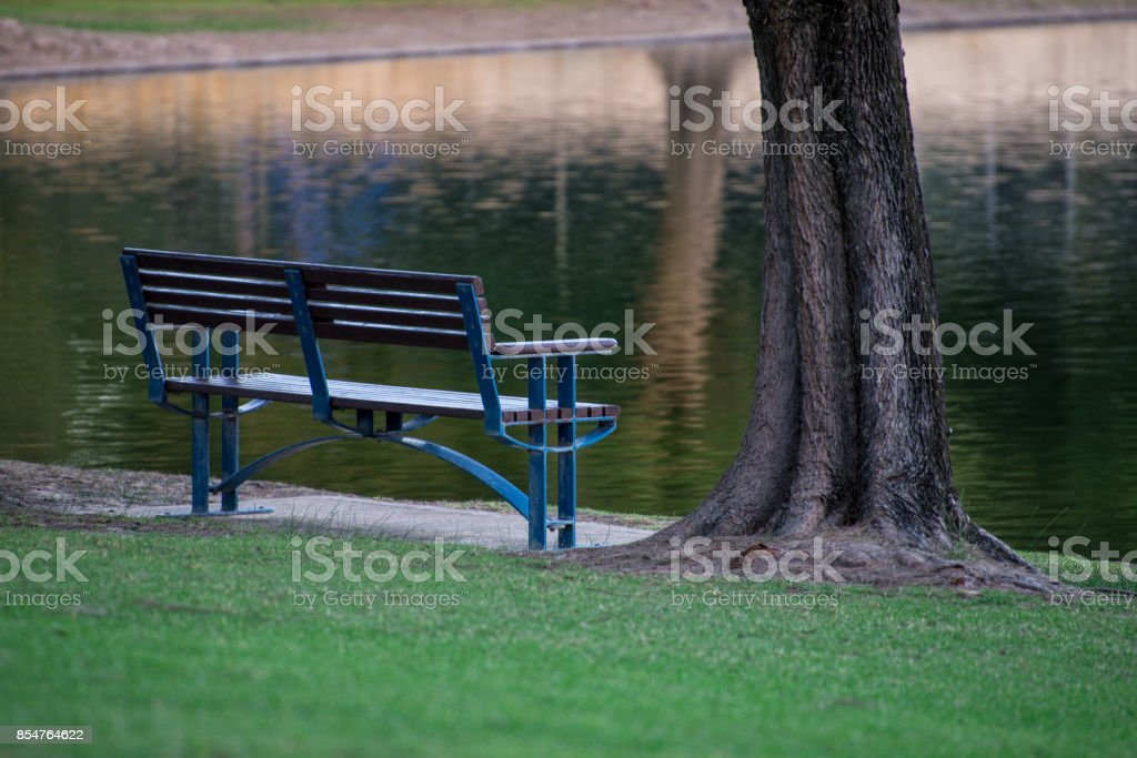Bench and a tree next to a pond in Sir James McCusker park, Iluka suburb, Western Australia stock photo
