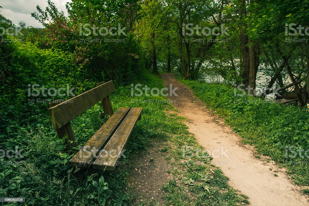 Bench and path in a green park royalty-free stock photo