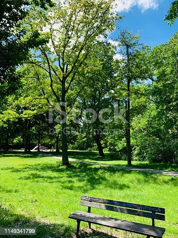 Bench and public park in sunny spring