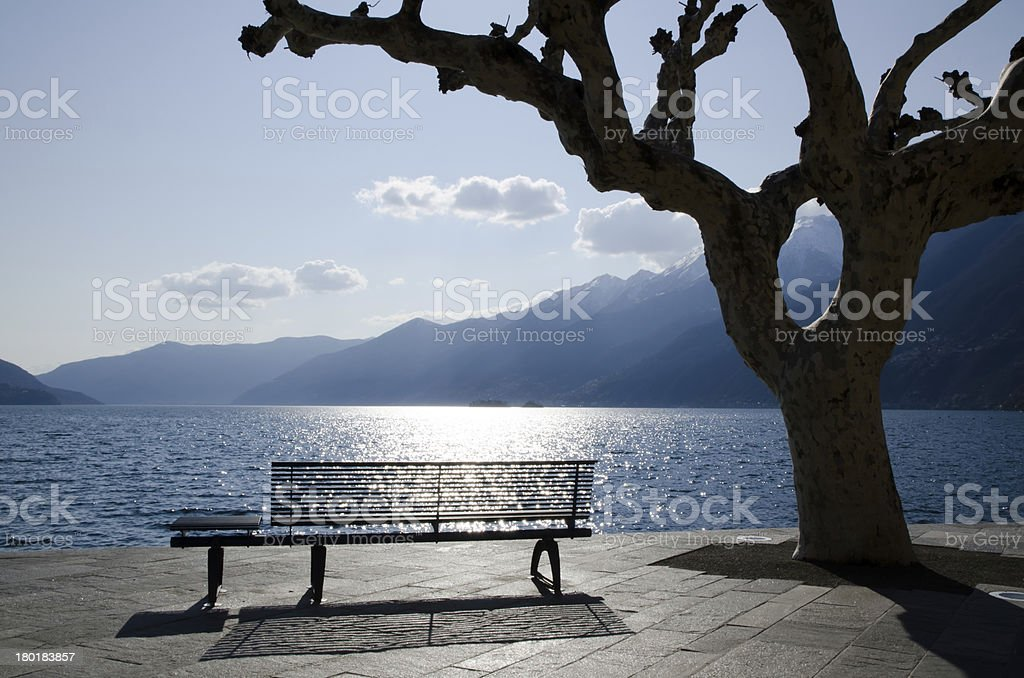 Bench and tree on an alpine lake royalty-free stock photo