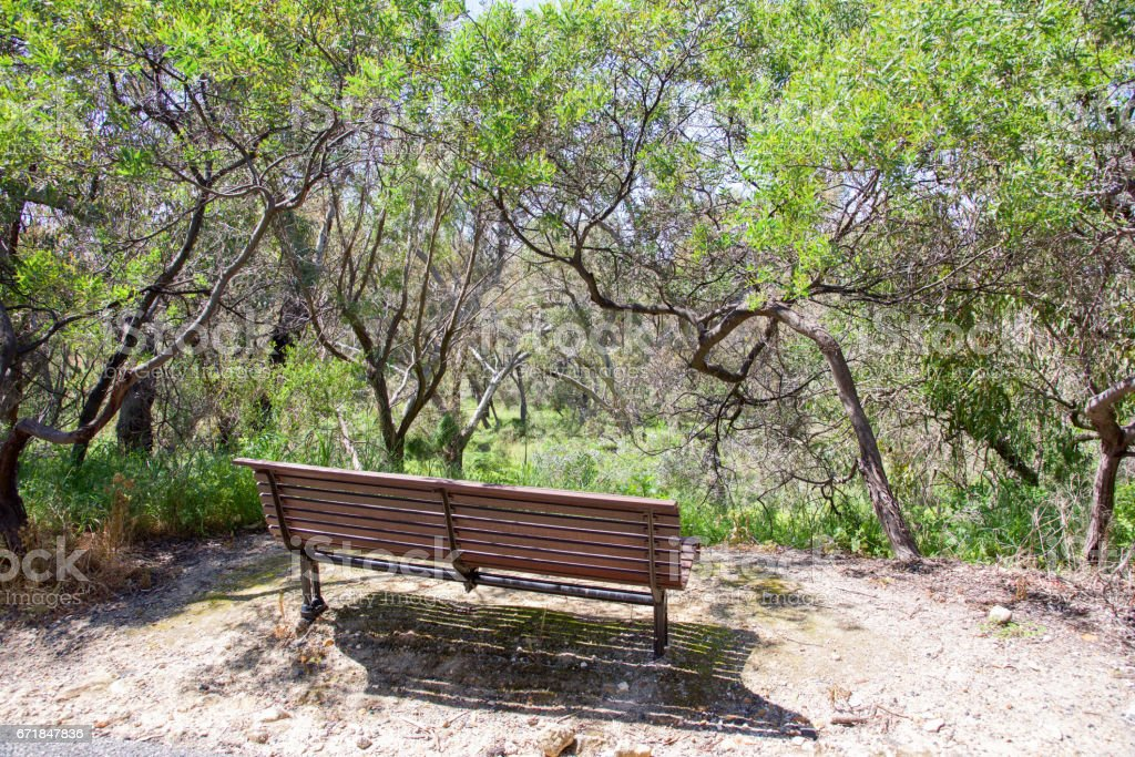Bench at Bold Park stock photo