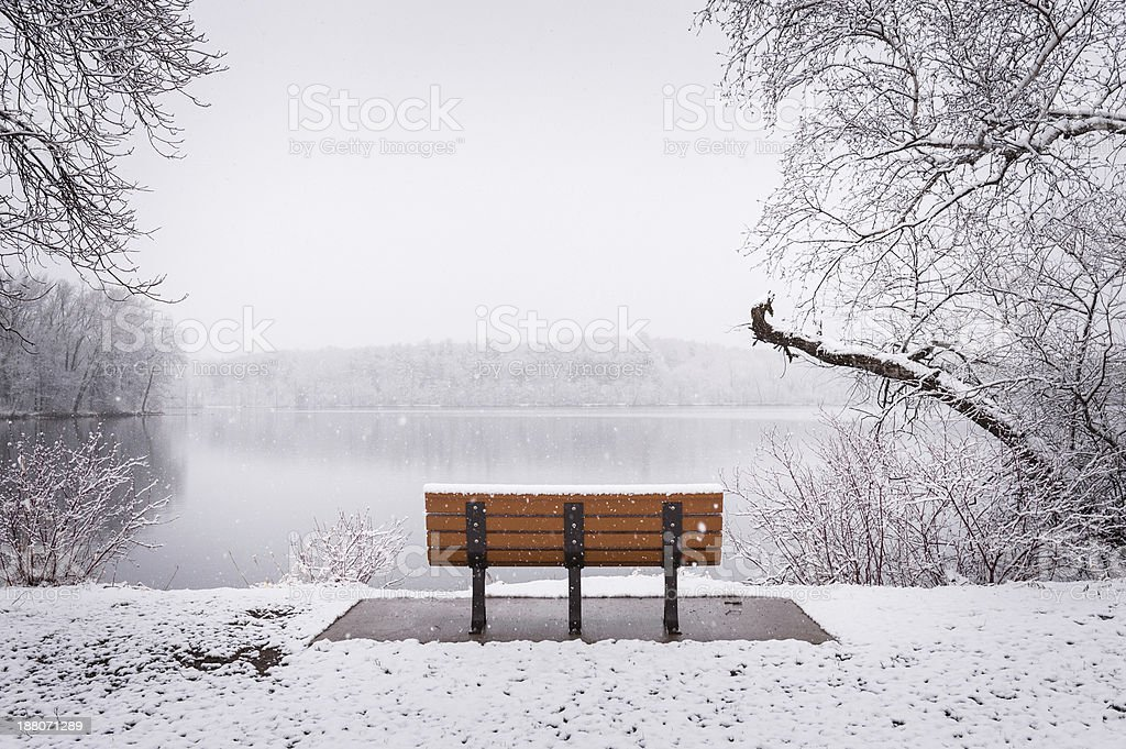 Bench facing lake during fresh snowfall stock photo