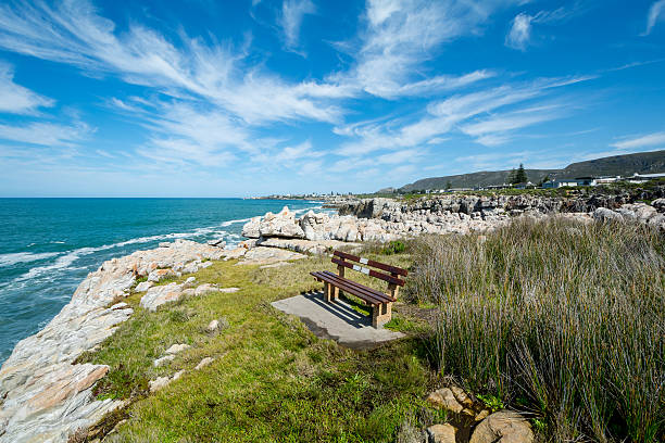 bench for Whale watchers at Hermanus A bench for Whale watchers at Hermanus in South Africa western cape province stock pictures, royalty-free photos & images