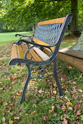 Astonishing Bench In A Country Garden Stock Photo Download Image Now Gmtry Best Dining Table And Chair Ideas Images Gmtryco