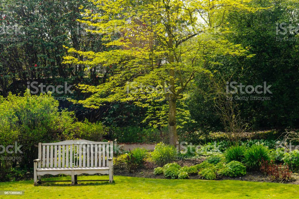 Bank in einem großen Garten – Foto