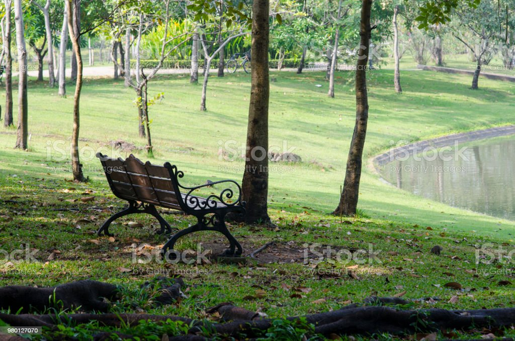 Bench In A Park In Spring Time Stock Photo More Pictures Of Alley