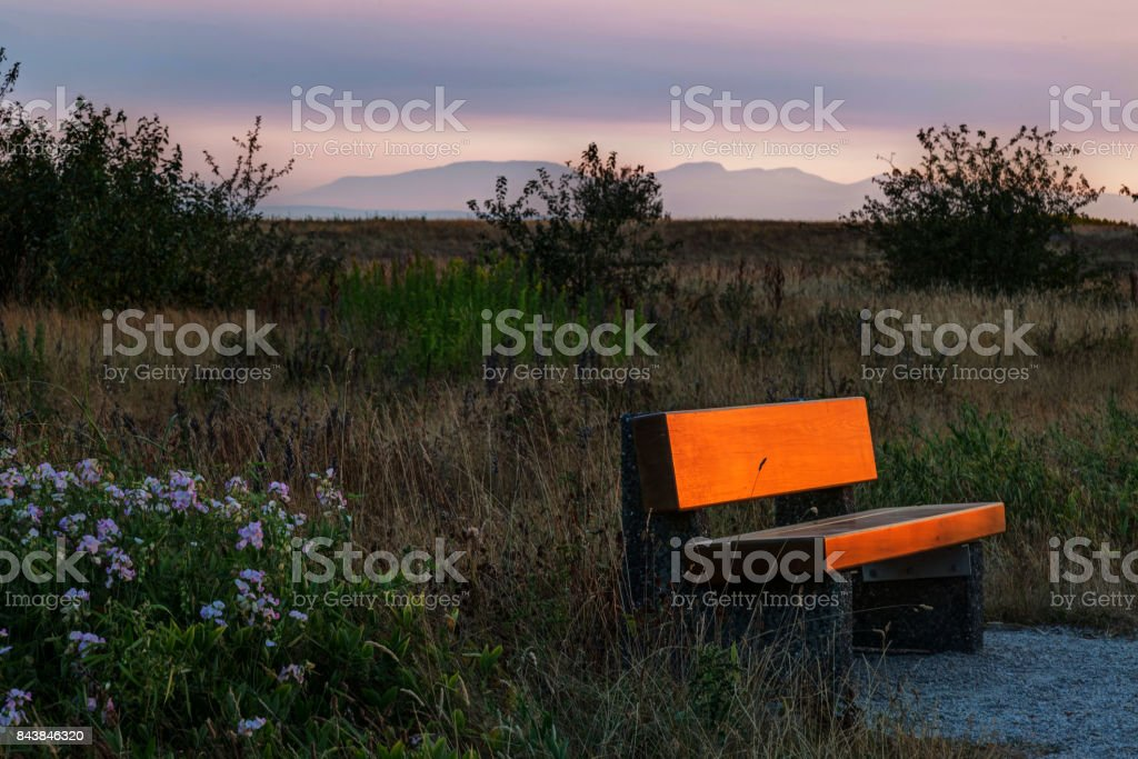 bench in a park with sunset light stock photo