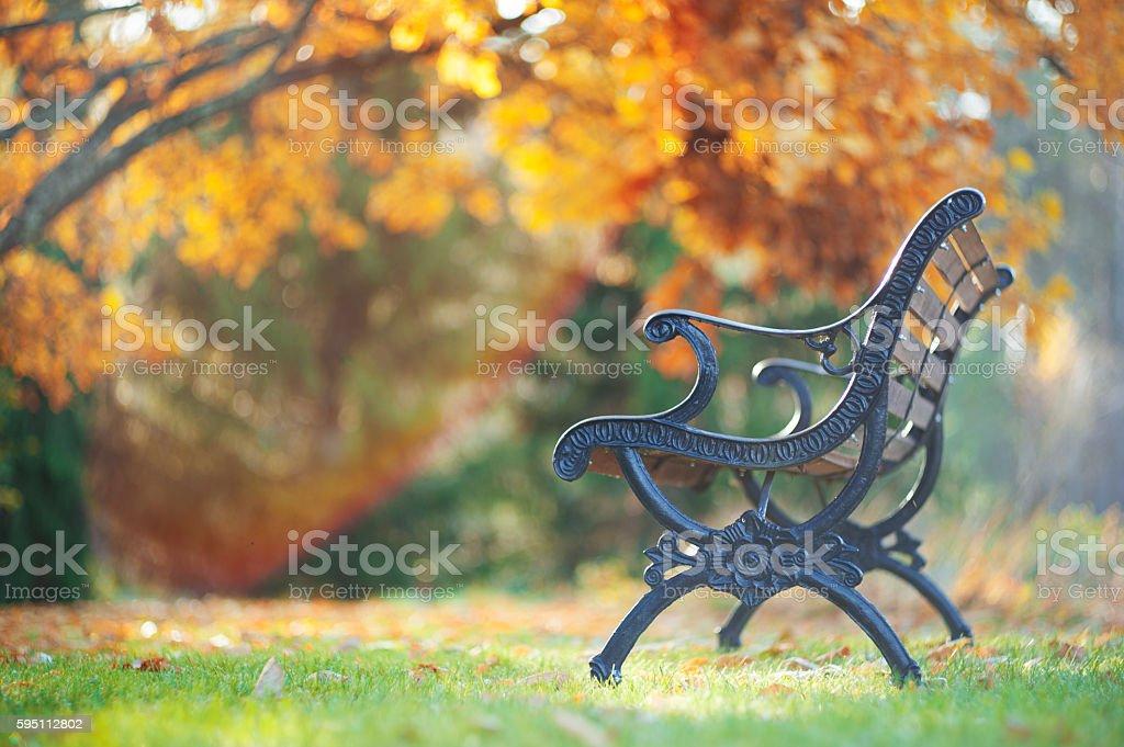Bench in autumn garden - Photo