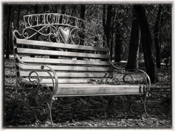 Bench in autumn park with fallen leaves in black and white stock photo