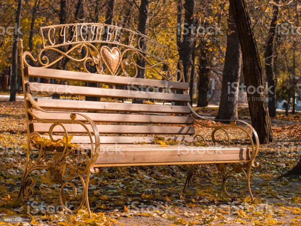 Bench in autumn park with fallen leaves stock photo