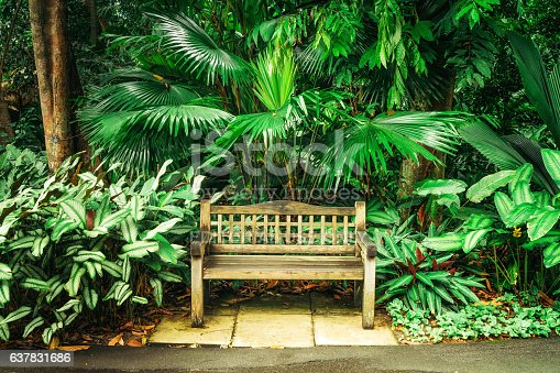 Singapore, Singapore - November 3, 2016: Empty Bench in Singapore Botanic Garden.