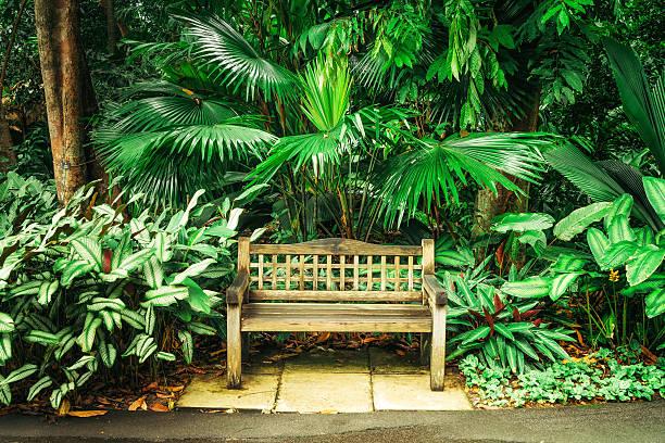 bench in Botanic Garden – Foto