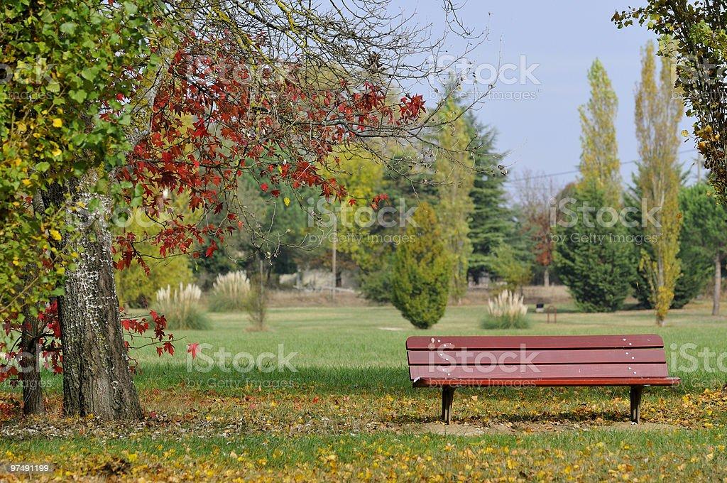 bench in garden royalty-free stock photo