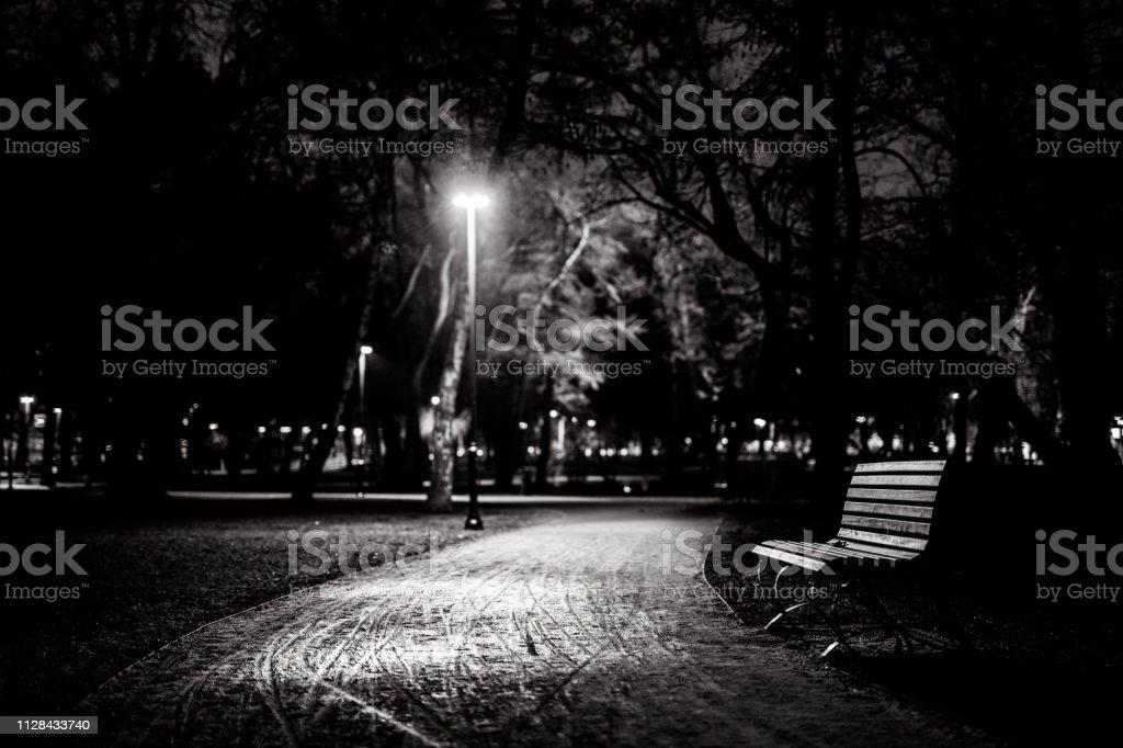 Photo libre de droit de Banc Dans Le Parc À Cracov Nuit Noir