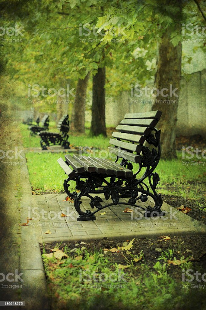 Bench in the old park. royalty-free stock photo