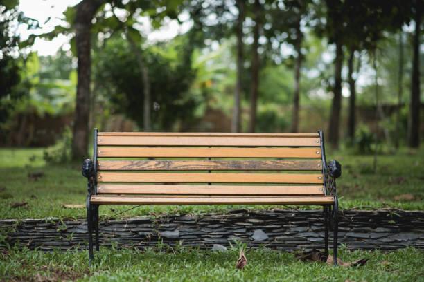 bänk i parken på grön bakgrund - bench bildbanksfoton och bilder