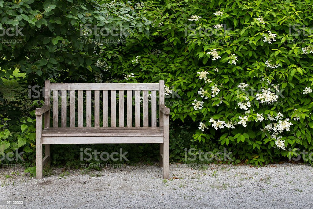 Bench in the park stock photo