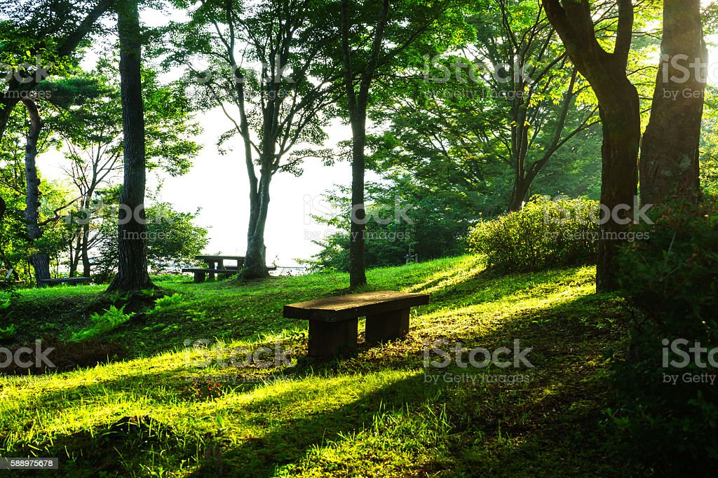 Bench in The Park, Yamanaka Lakeside ストックフォト