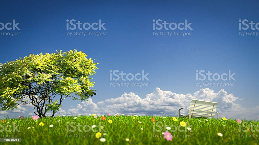 Bench on a grass field royalty-free stock photo